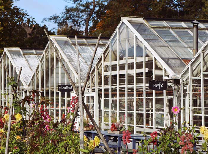 Rosendals trädgårds växthus
